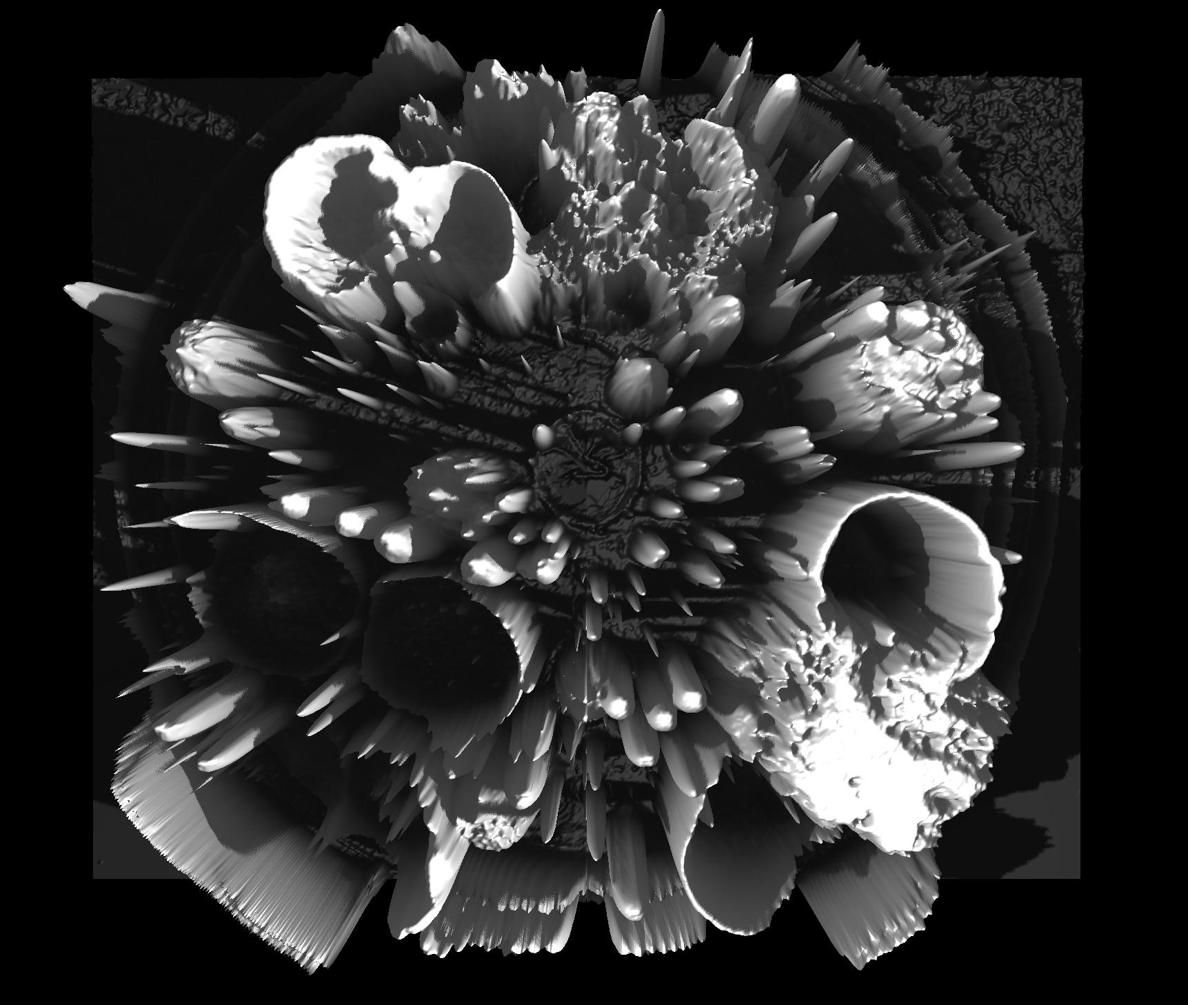 3D images, 2019