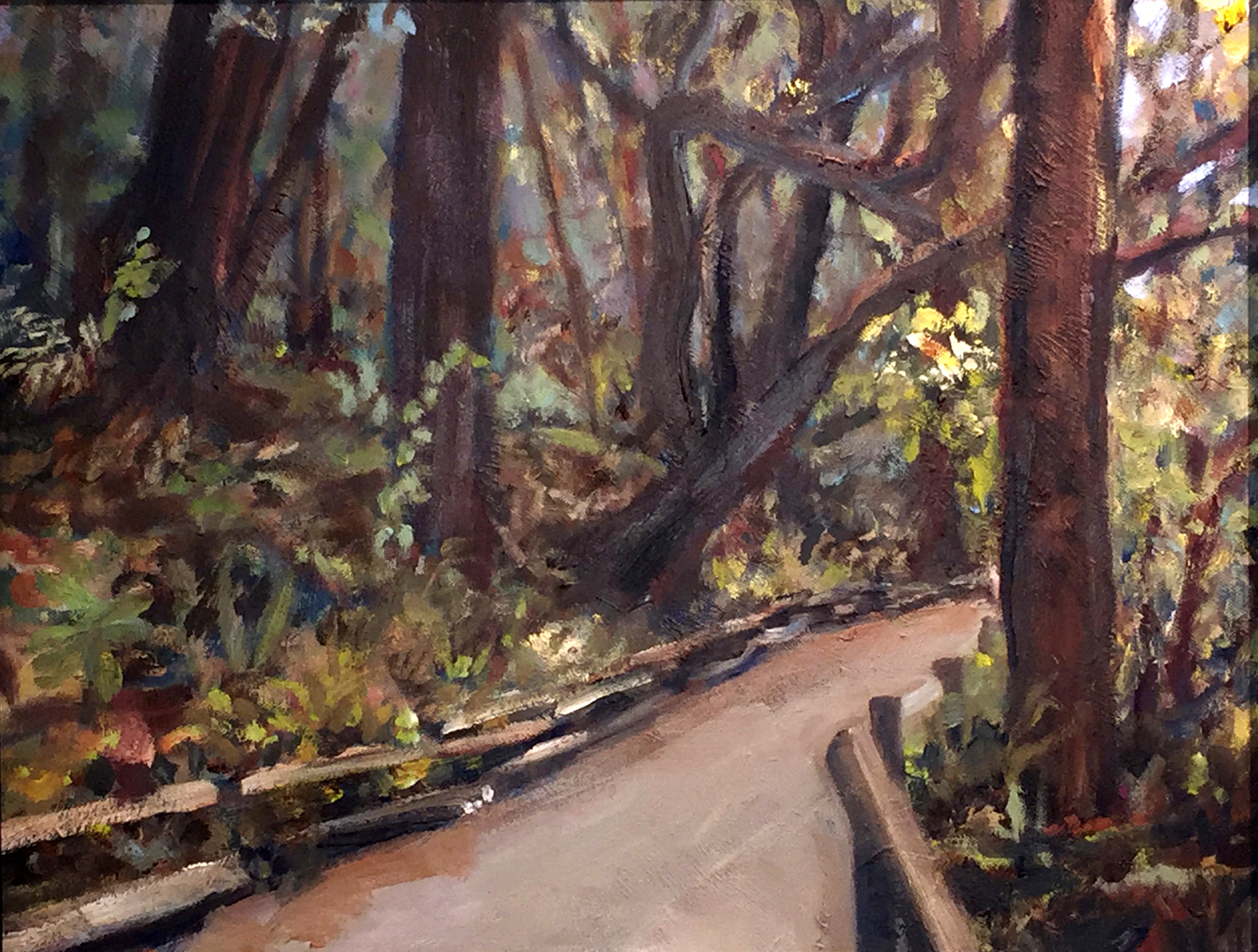 Muir Woods; oil on linen; 18 in x 24 in.jpg
