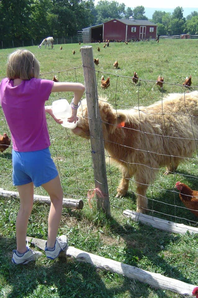 Cooper's Ark Farm:  Home to 600+ laying hens, 30+ goats, llamas, an alpaca, and a donkey. Customized tours available daily by appointment only.