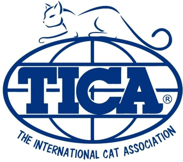 Proud member Of TICA breeders - Check out Savannahland Cattery on the TICA website !