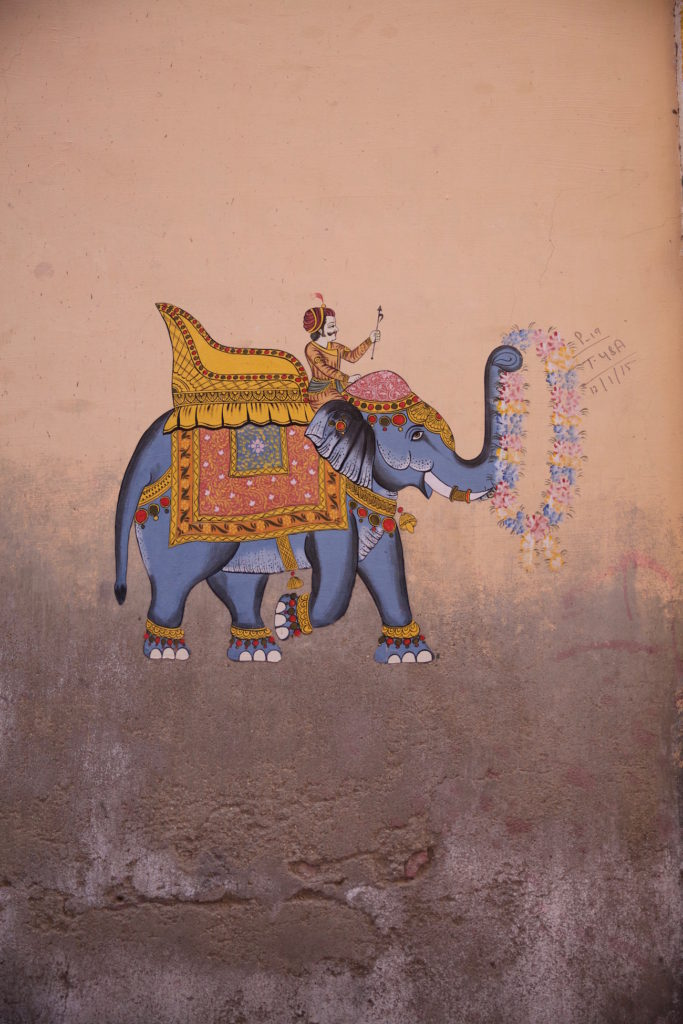 c.chitnis-India_6007-683x1024.jpg