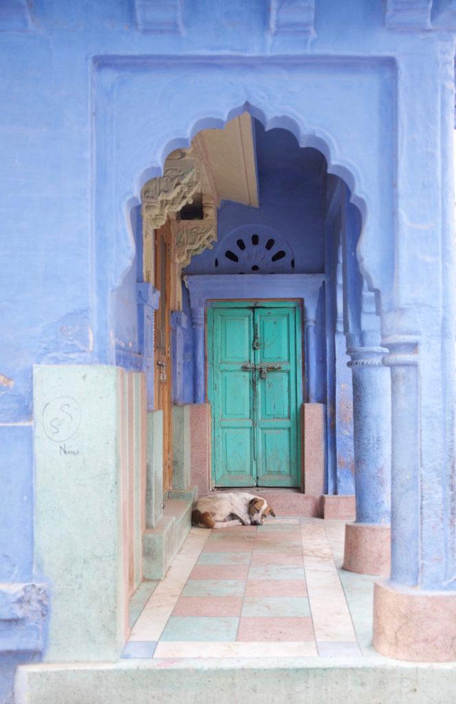 c.chitnis-India_6217-663x1024.jpg