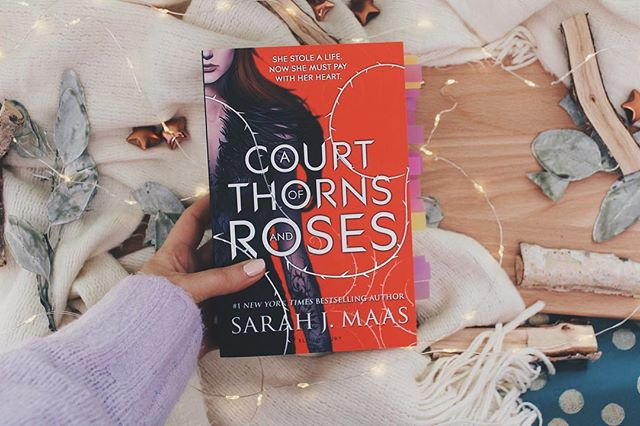 just posted a review of a court of thorns and roses on my blog link is in my bio  #acourtofthornsandroses #booksbooksbooks #bookstagram #book #books #bookshelf #bookblogger #bookobsessed