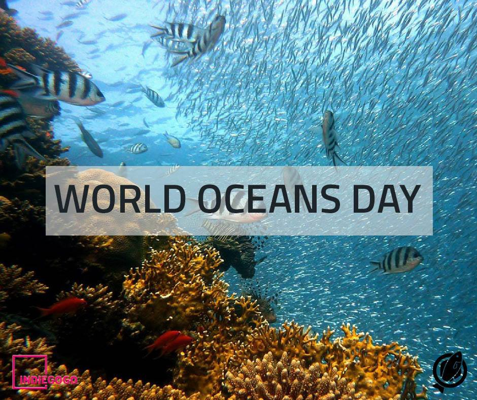 world ocean day.jpeg