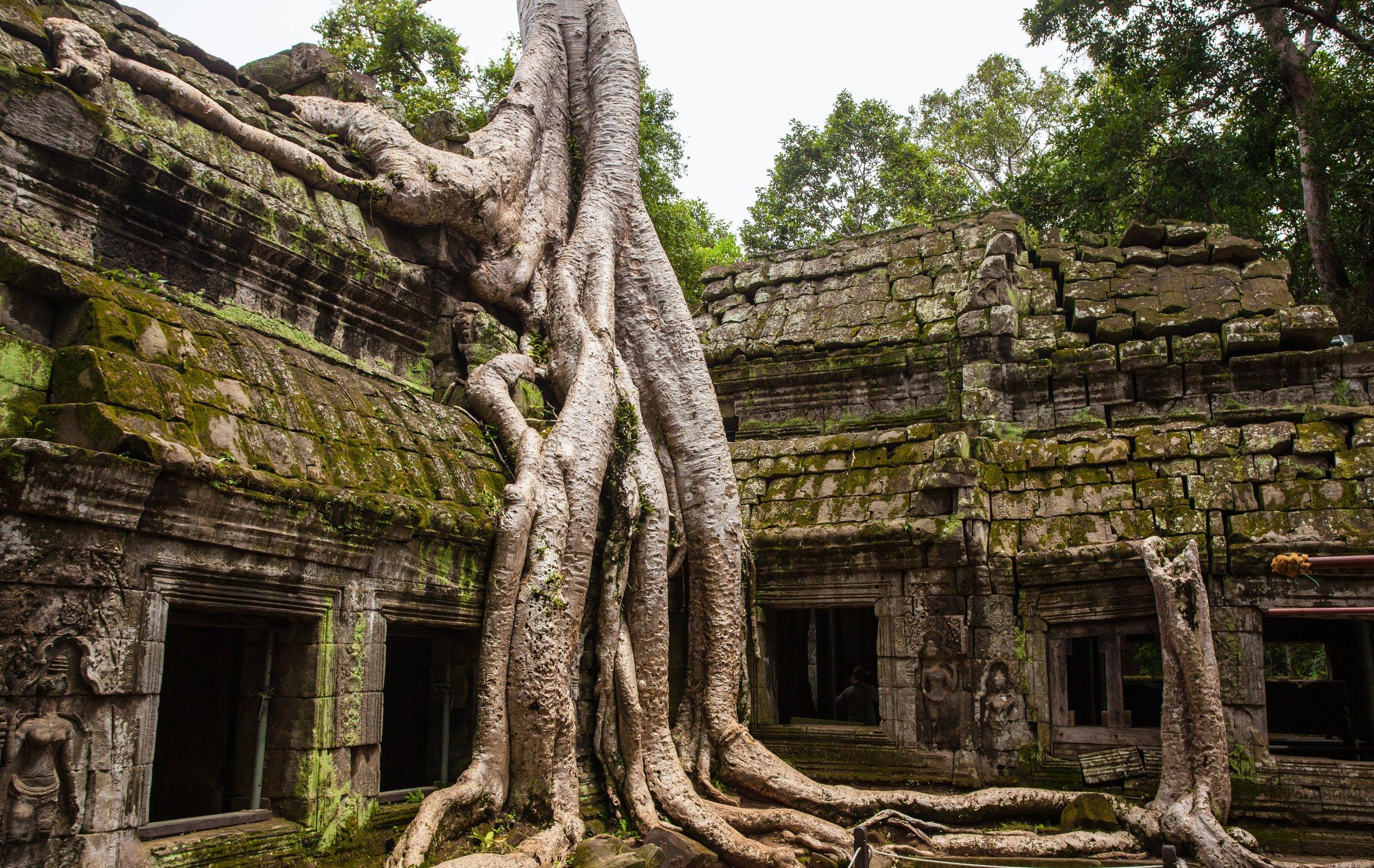 dive unkown cambodia -