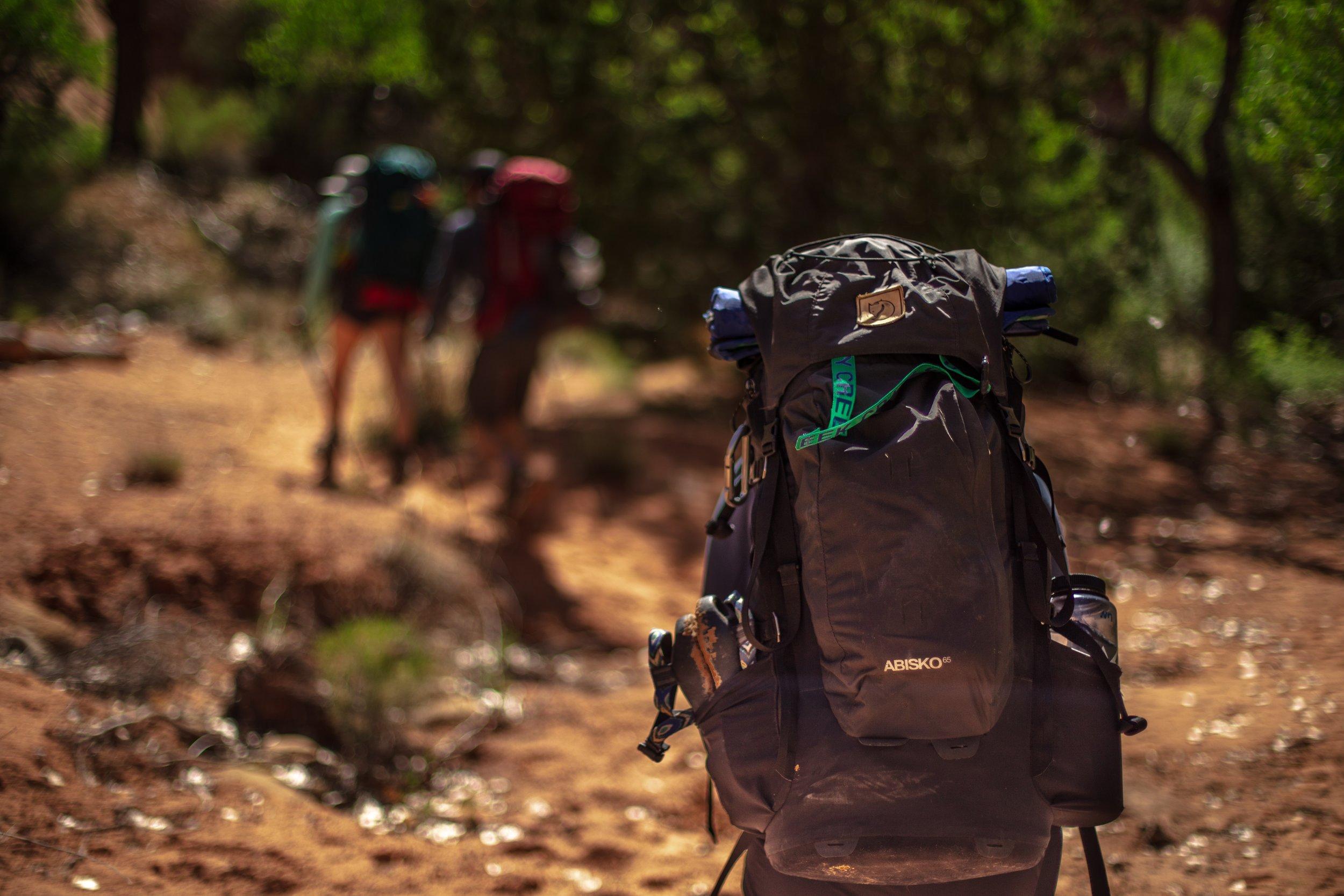 Trekking - A beginners course -