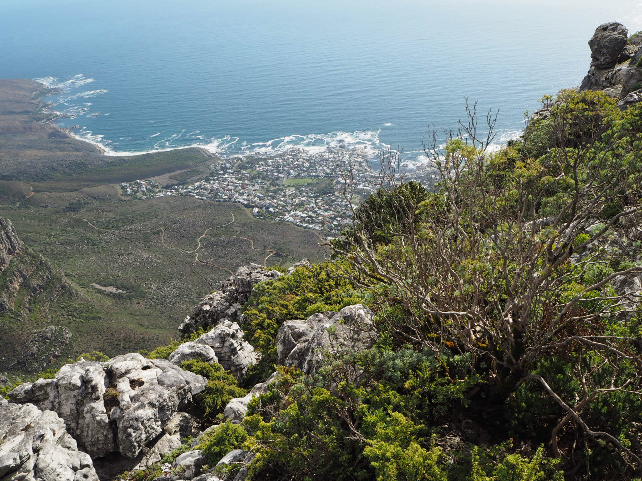 Above the clouds, overlooking Camps Bay and Bakoven from Table Mountain National Park.