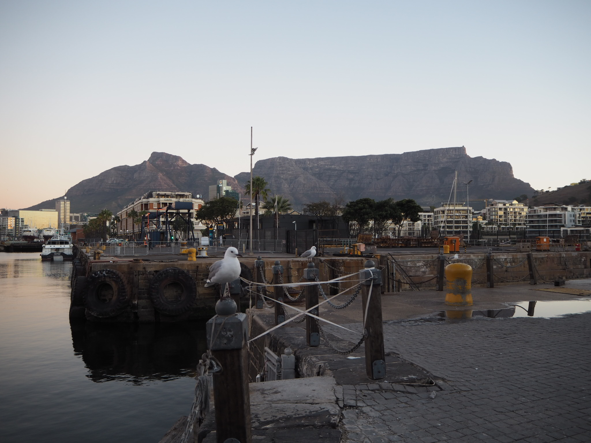Never tired of looking at the beautiful Table Mountain.