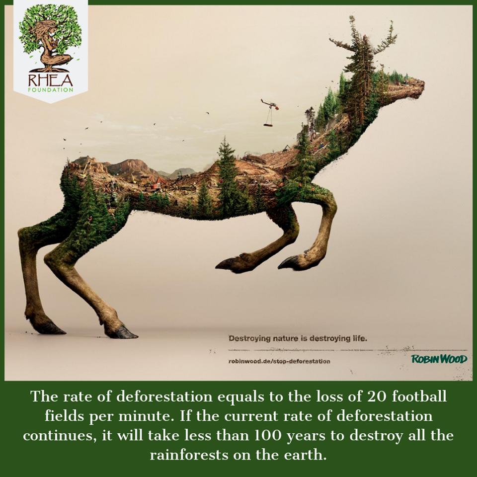 Δάσος της βροχής, Αμαζόνιος- 5 Ιουνίου, 2019   Σήμερα γιορτάζουμε την Παγκόσμια Ημέρα Περιβάλλοντος όπως καθορίστηκε από τα Ηνωμένα Έθνη με ένα απλό μήνυμα: «Σταματήστε να καταστρέφετε τον πλανήτη μας».