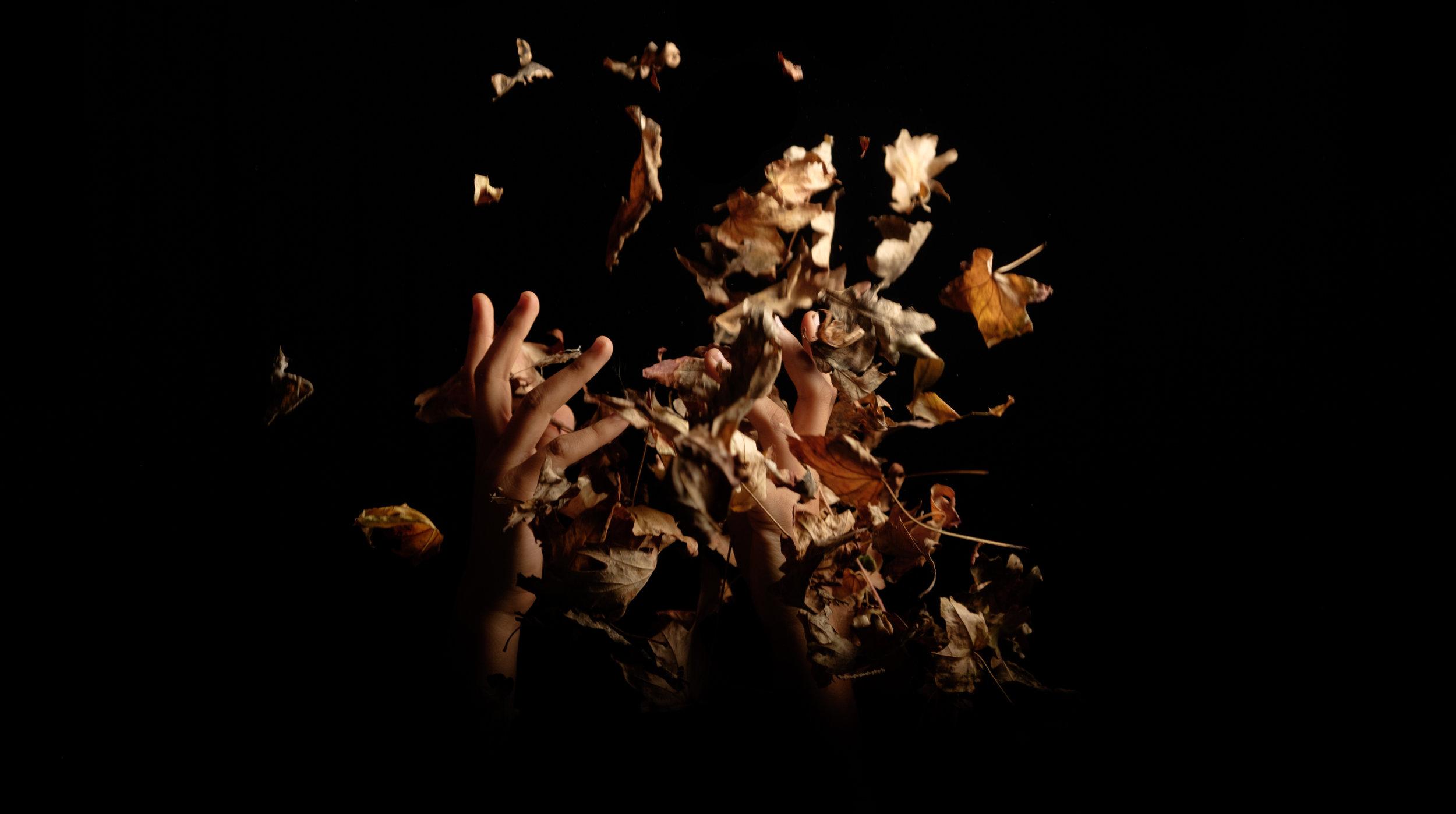 throwing-leaves2.1.jpg