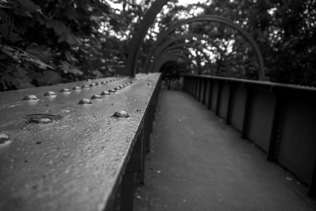 Ashton Park Bridge