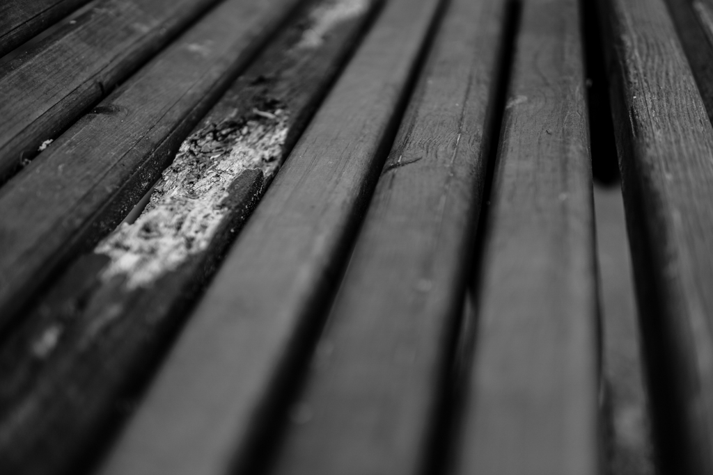 Monochrome Simplicity