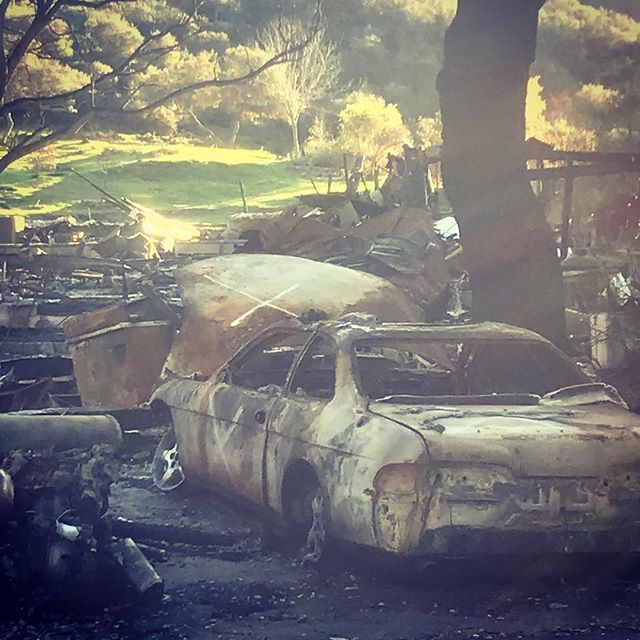 These photos were taken on January January 21 almost three months after the #woolseyfire. Looks like it could have happened yesterday. 😢