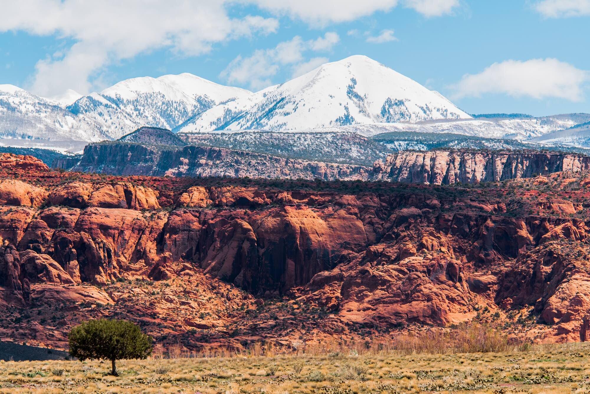 Redrock meets mountains at Mt. Tuk //  [o]   @codytownsend