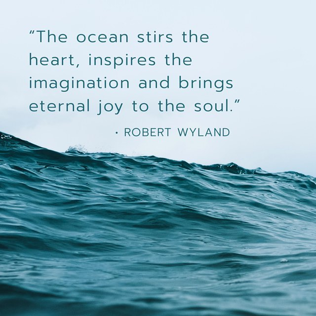 The ocean is apart of all of us and has impact on our well being in this world . Think of the ocean today and #knowyourimpact matters & let the ocean inspire you 🌊 . . #curaplanet #oceanquotes #cleanoceans #healthyoceans #oceanconservation #marinebiology #marineanimals #createlesswaste #lowwasteliving #zerowasteliving