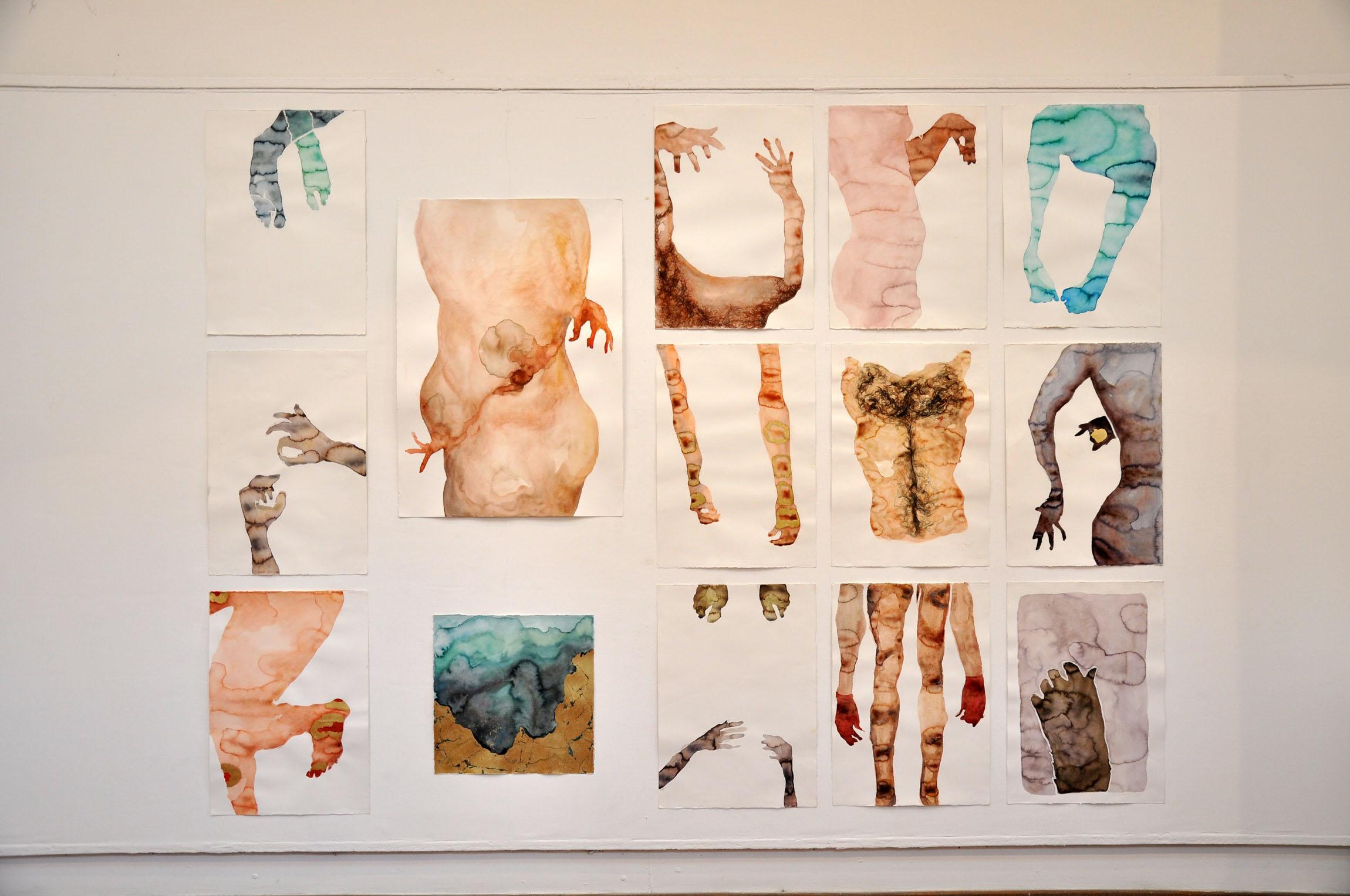 Valedictorian Art Exhibition, Vladan Sibinovic