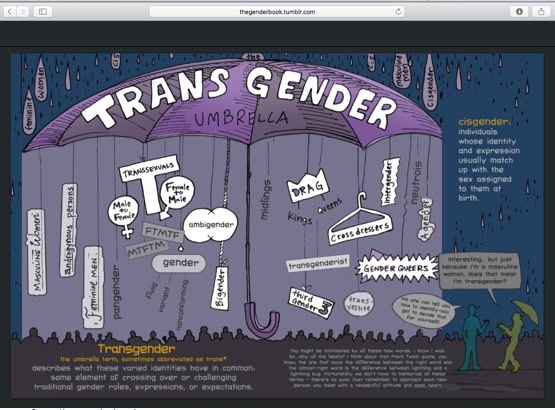 page from  thegenderbook.com