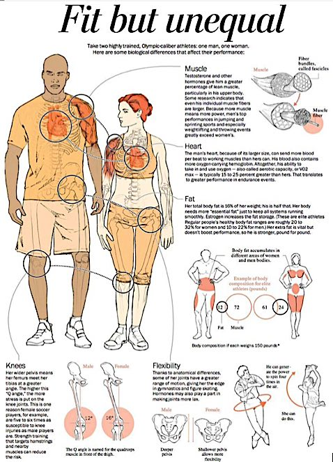 sexual_dimorphism_trans_sports_3.jpg