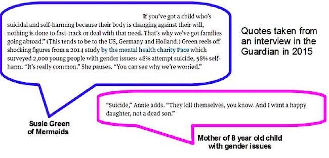 Mermais, trans youth suicide