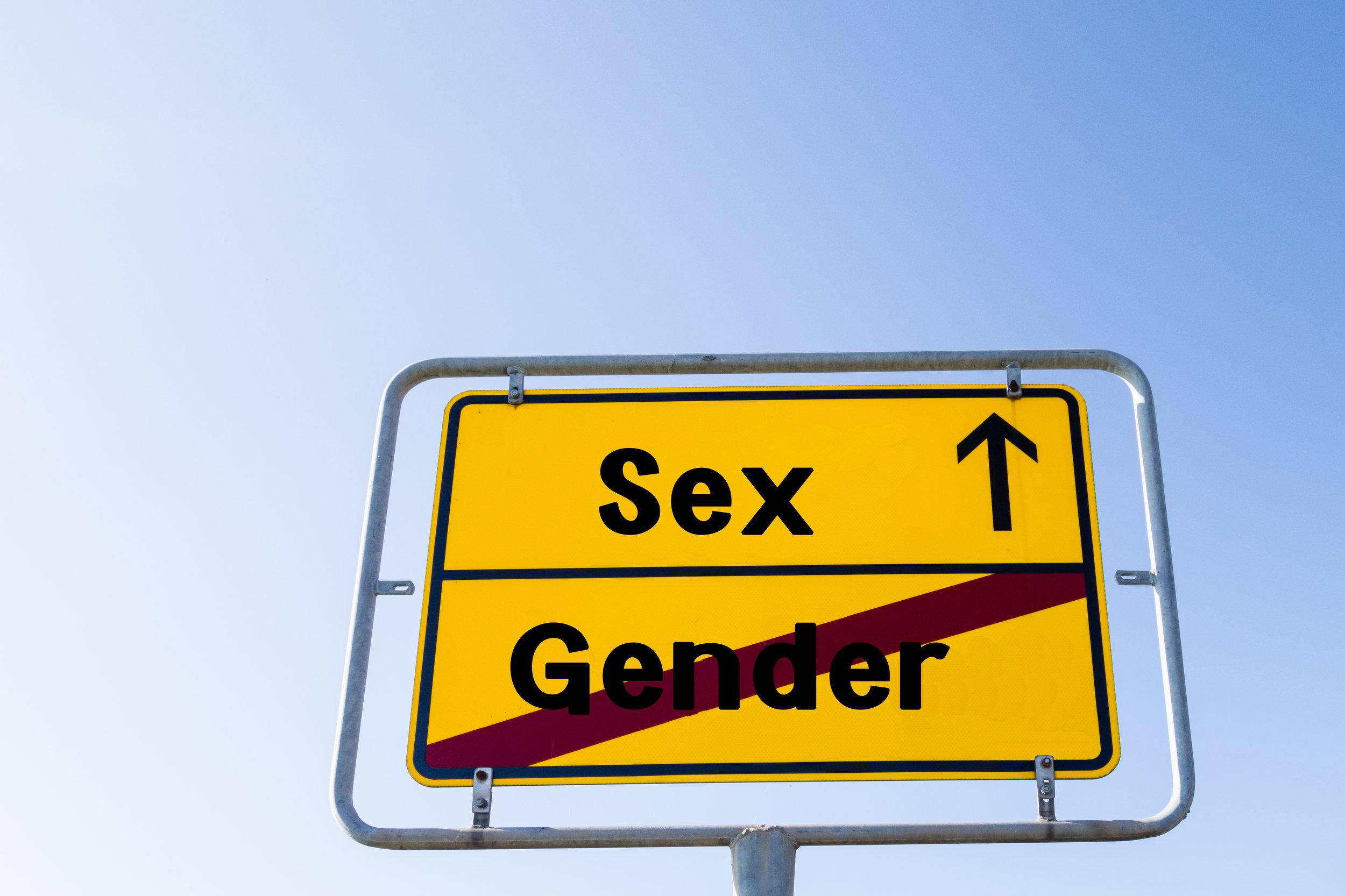 sex not gender: gender critical