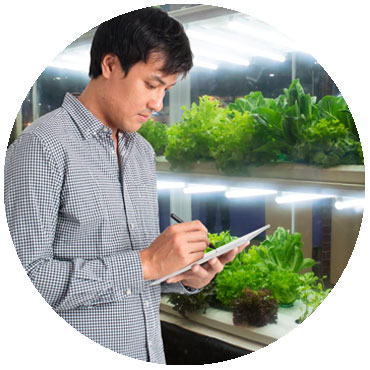 controlling automated vertical farming system