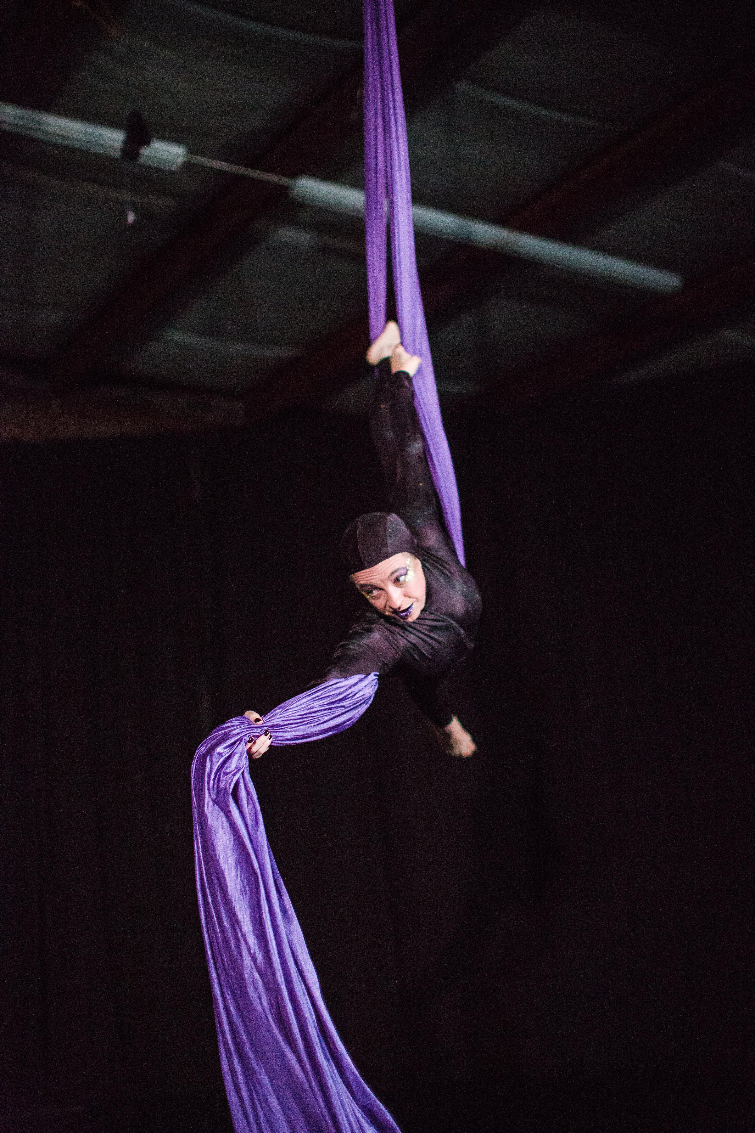 2017_12_10_durham_school_ballet_winter_showcase_party-3831.jpg