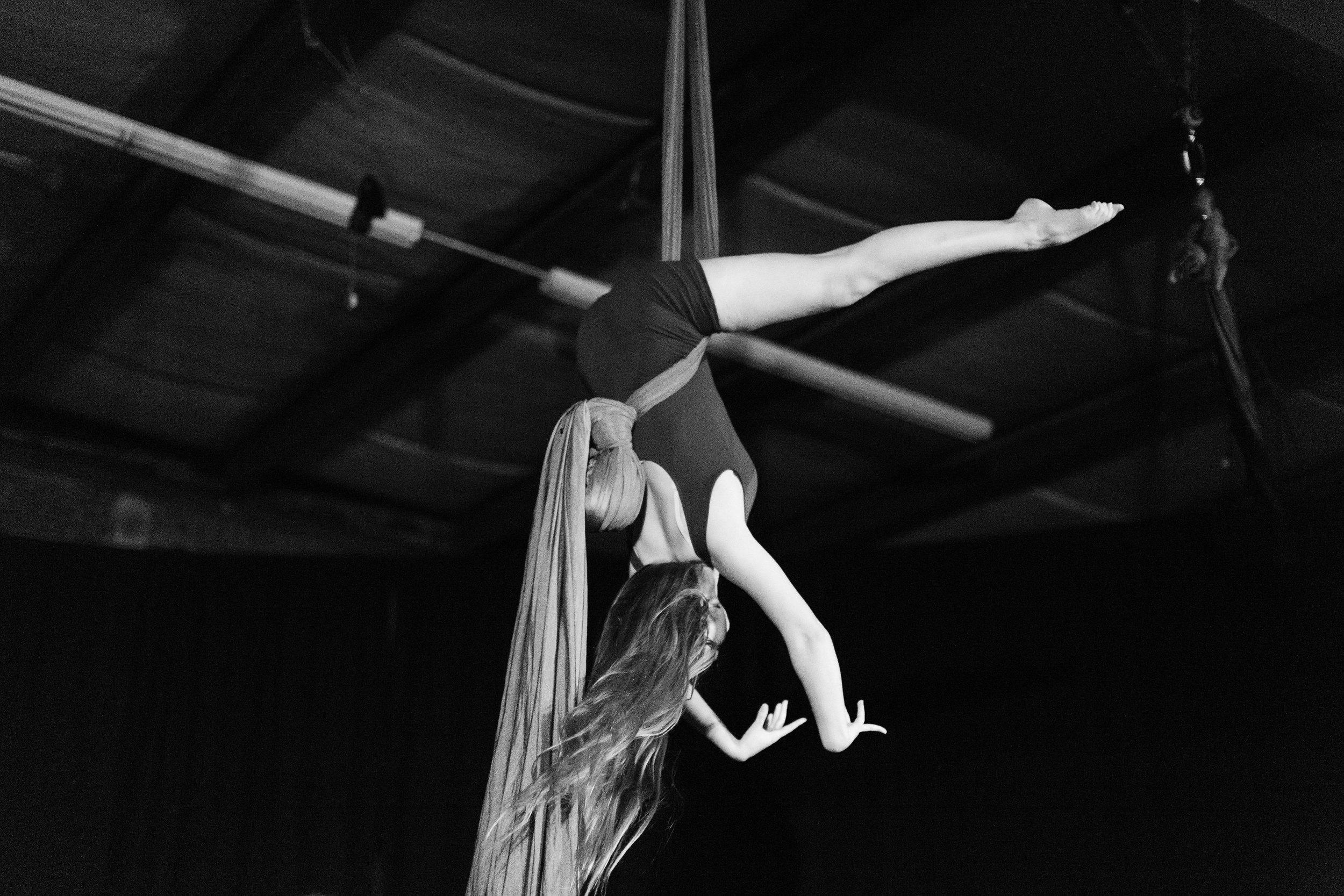 2017_12_10_durham_school_ballet_winter_showcase_party-3857-Copy1.jpg