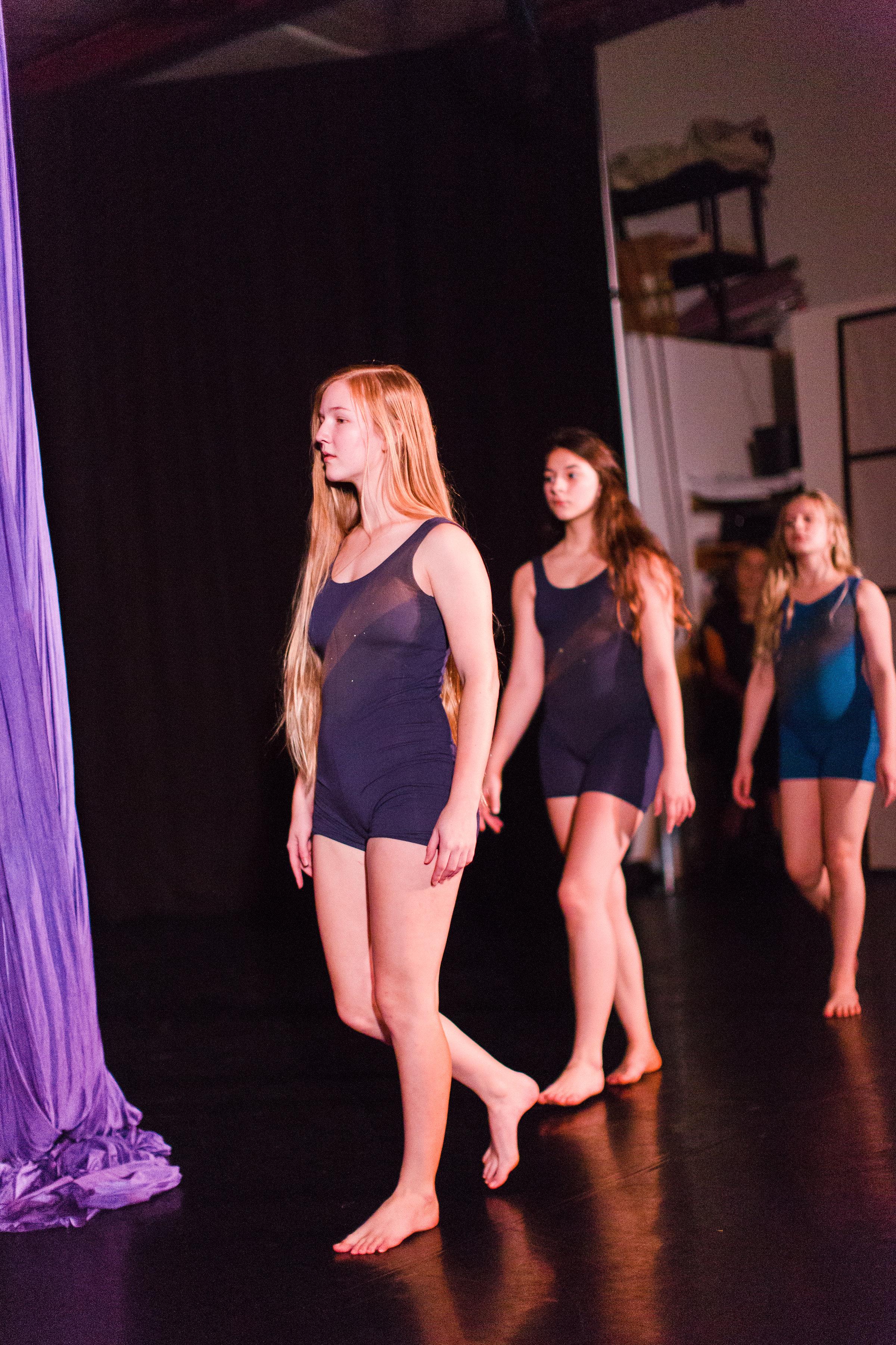 2017_12_10_durham_school_ballet_winter_showcase_party-3869.jpg