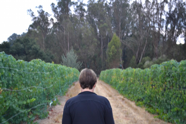 gali-vineyards-janice.jpg