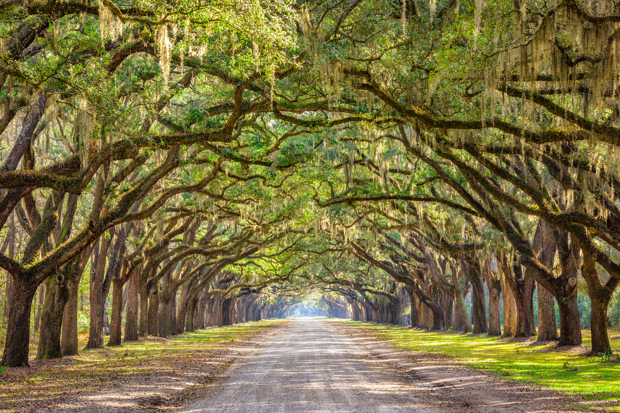 """Enjoy beautiful surroundings and all the charm that the south has to offer. So pack your bags and like Mr. Charles said, """"Hit the Road Jack"""" and head on down to Georgia!"""