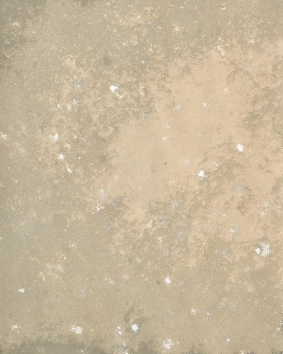 "Kodak - Buried • 2012 • Kodachrome Basin State Park, UT • Kodak Black & White Fiber Base Paper 8""x10"""