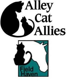 - Volunteer at the Alley Cat Allies FieldHaven Recovery Shelter