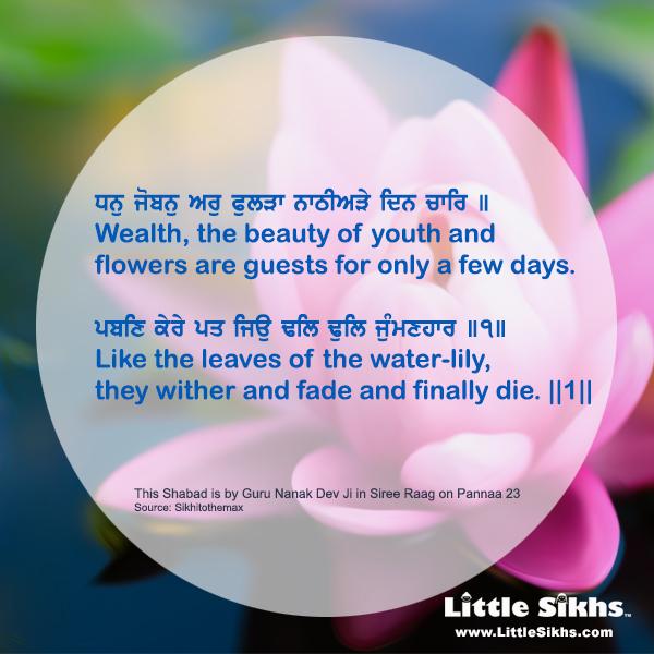 wealth-and-beauty.jpg