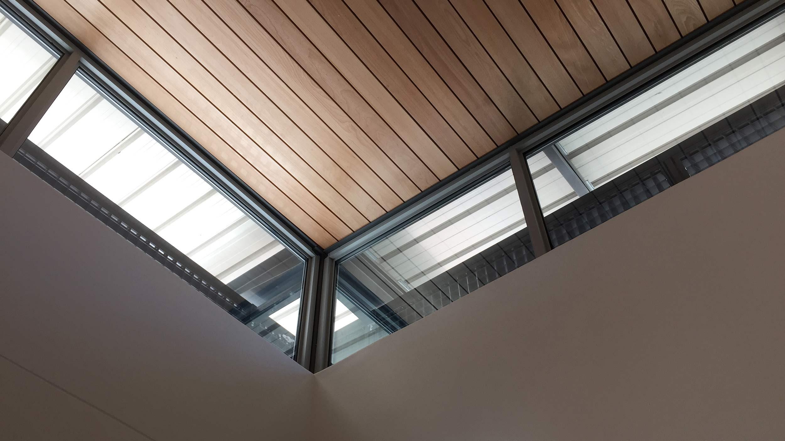 Claremont Ear Institute Ceiling