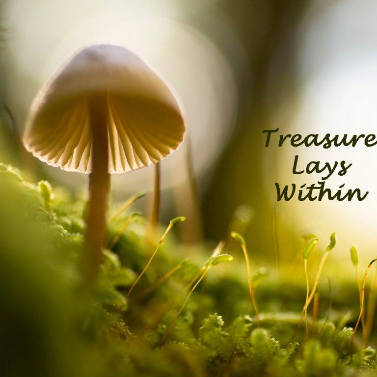 mushroom in undergrowth