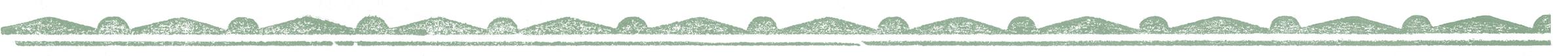 Horizontal_divider 03_green.png