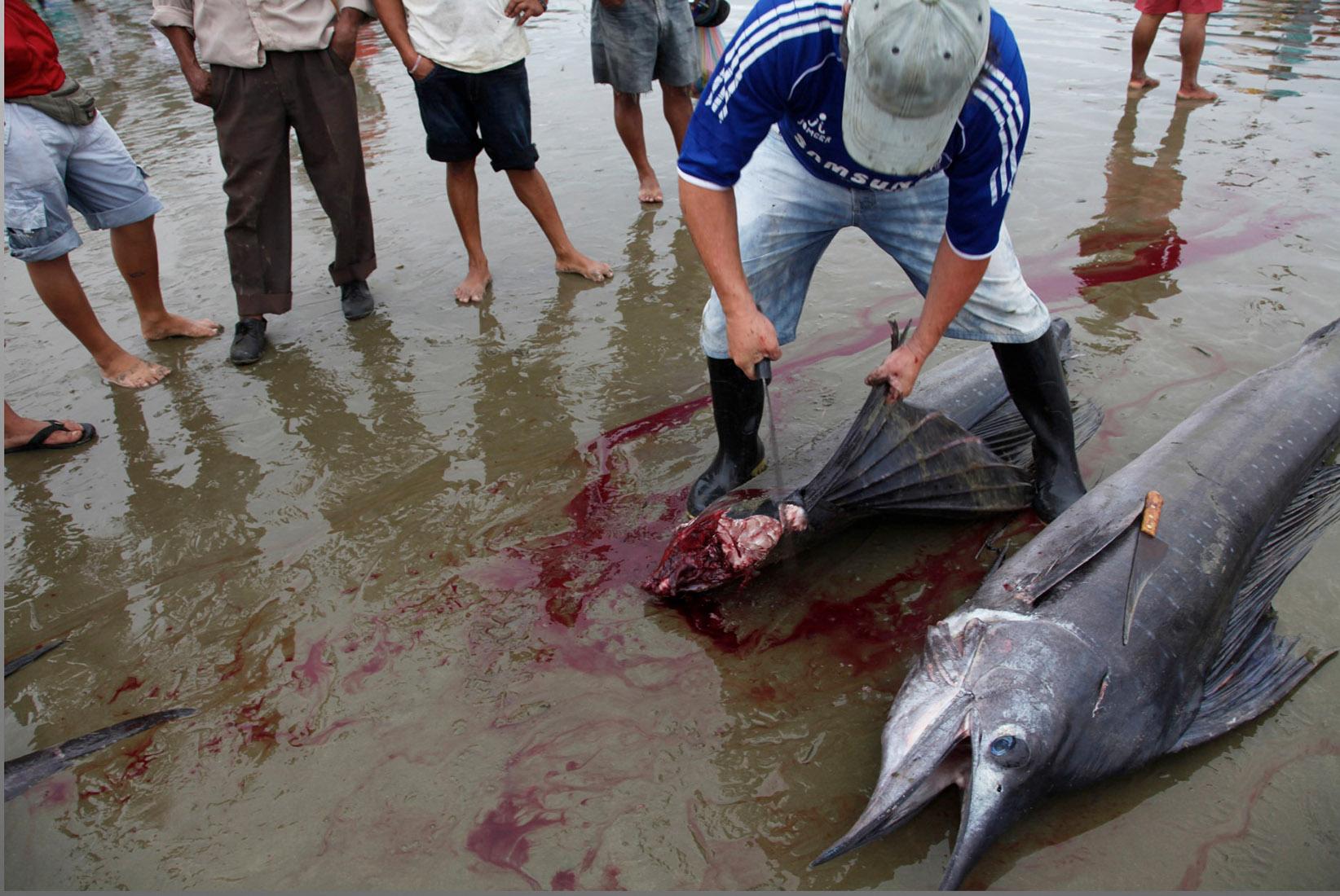 Ecuador_fishing.jpg