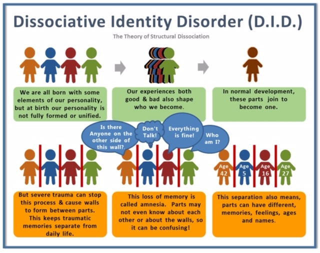 "Image Description: Letters across the top say ""Dissociative Identity Disorder"" (DID), with sub-heading of ""The Theory of Structural Dissociation"". Graphic is then split in two rows, with three pictures each. Top row depicts normal development: first square shows unjoined paper doll figures (caption reads ""We are all born with some elements of our personality, but at birth our personality is not fully formed or unified""; second picture has them closer together and overlapping, with caption that reads ""our experiences both good and bad also shape who we become""; final image is brown single person outline with caption that reads ""In normal development, these parts join to become one"". In second row, first picture depicts the paper dolls again, but with lines drawn between each figure and caption reads ""But severe trauma can stop this process and cause walls to form between parts. This keeps traumatic memories separate from daily life""; second picture adds speaking balloons to divided characters that read ""Is there anyone on the other side of this wall? Don't Talk! Everything is fine! Who am I?"" and caption says ""This loss of memory is called amnesia. Parts may not even know about each other or about the walls, so it can be confusing."" The third and final picture adds ages to each of the paper doll characters still divided by walls - age 42, age 5, age 16, age 27 - and caption reads ""This separation also means parts can have different memories, feelings, ages, and names."""