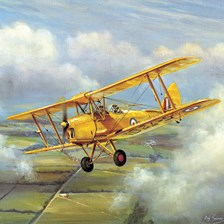 Card Tiger Moth.jpg