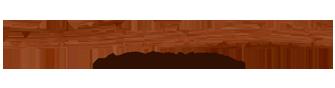 Wooden Model Logo.png