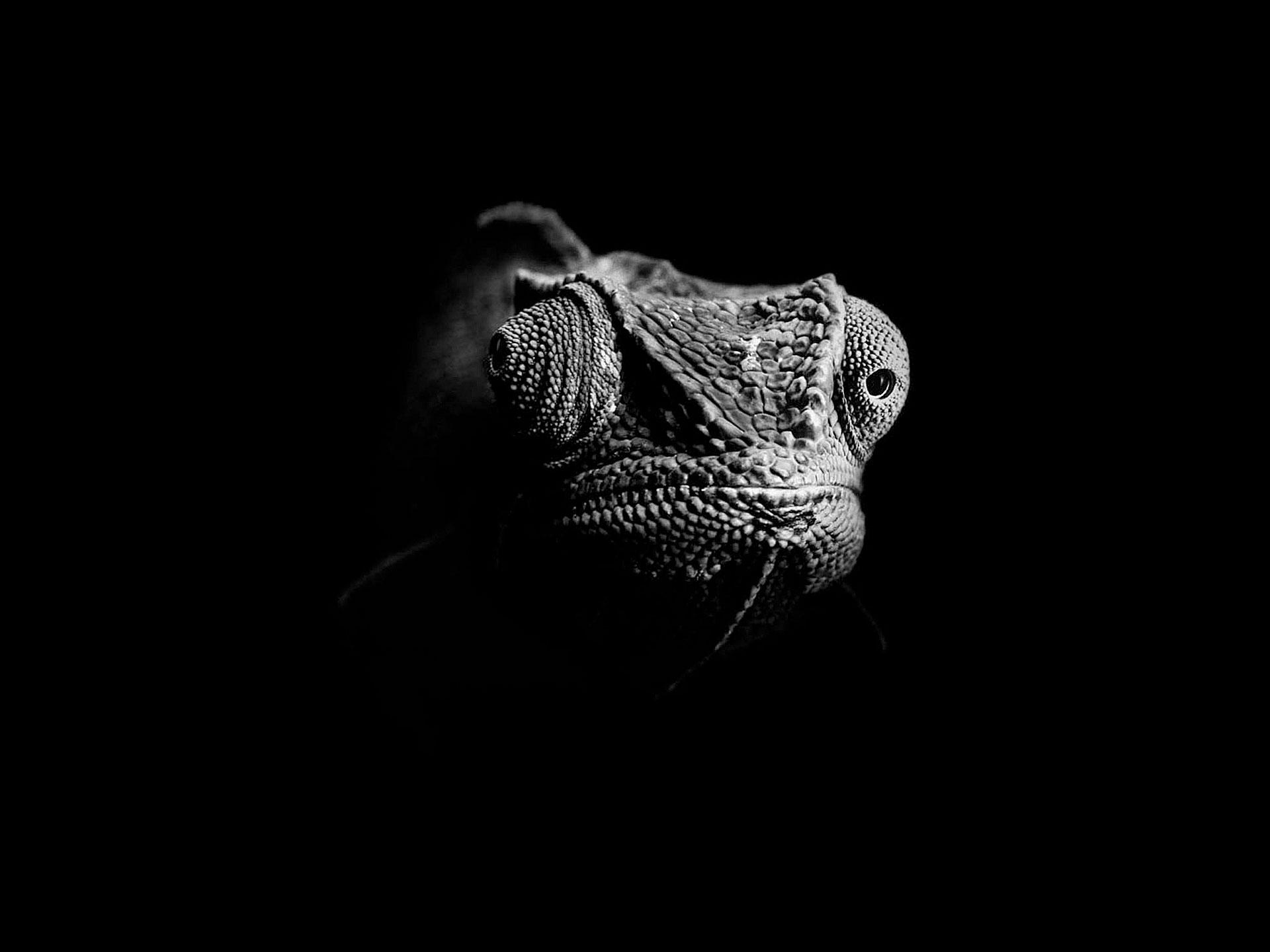 Werbefotograf Schweiz Zürich Peter Hebeisen - Winterthur XL #25