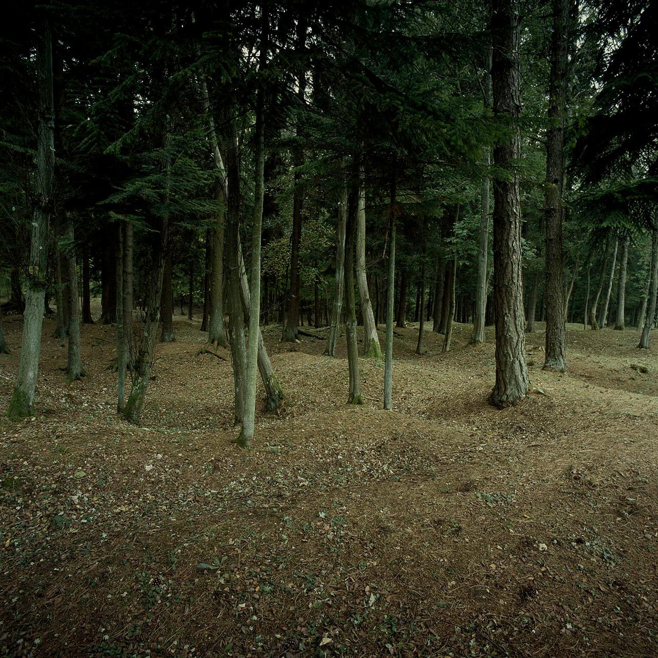 Landschaft Fotografie | Schlacht von Verdun, Frankreich