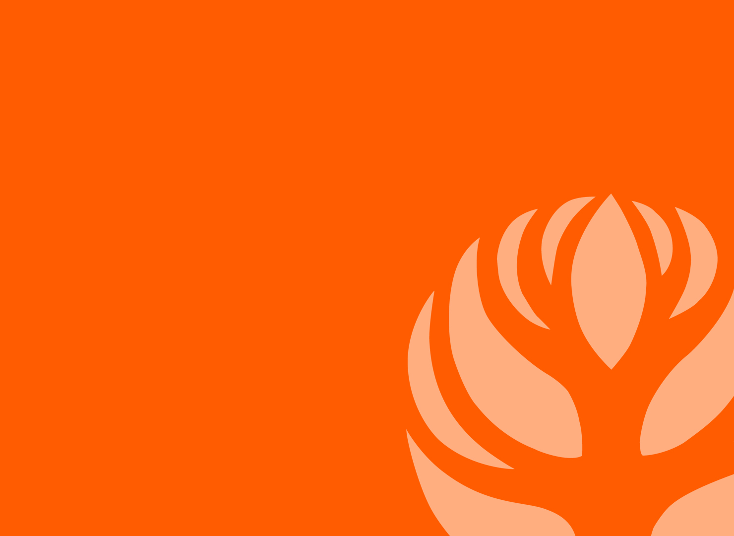 Maple Leaf Community Fund -
