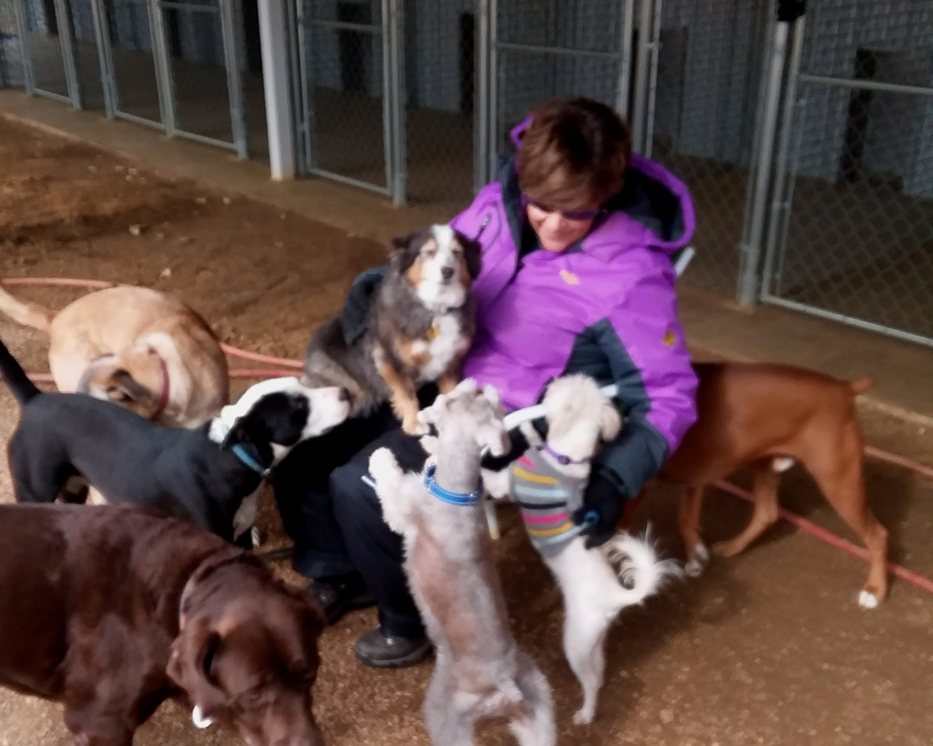 Melissa with New Year's 2018 dogs.jpg
