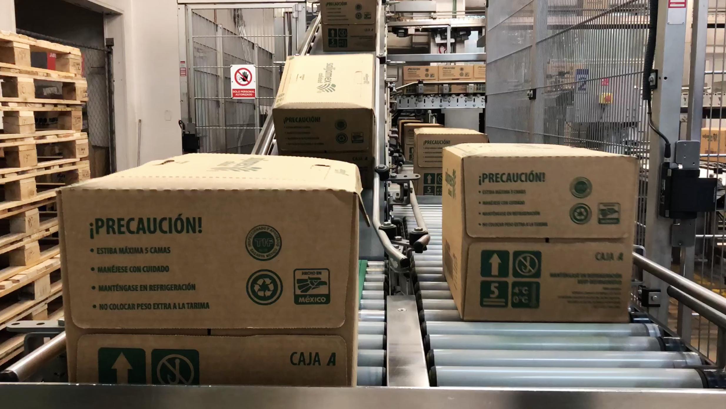 red de distribucion interna fabrica