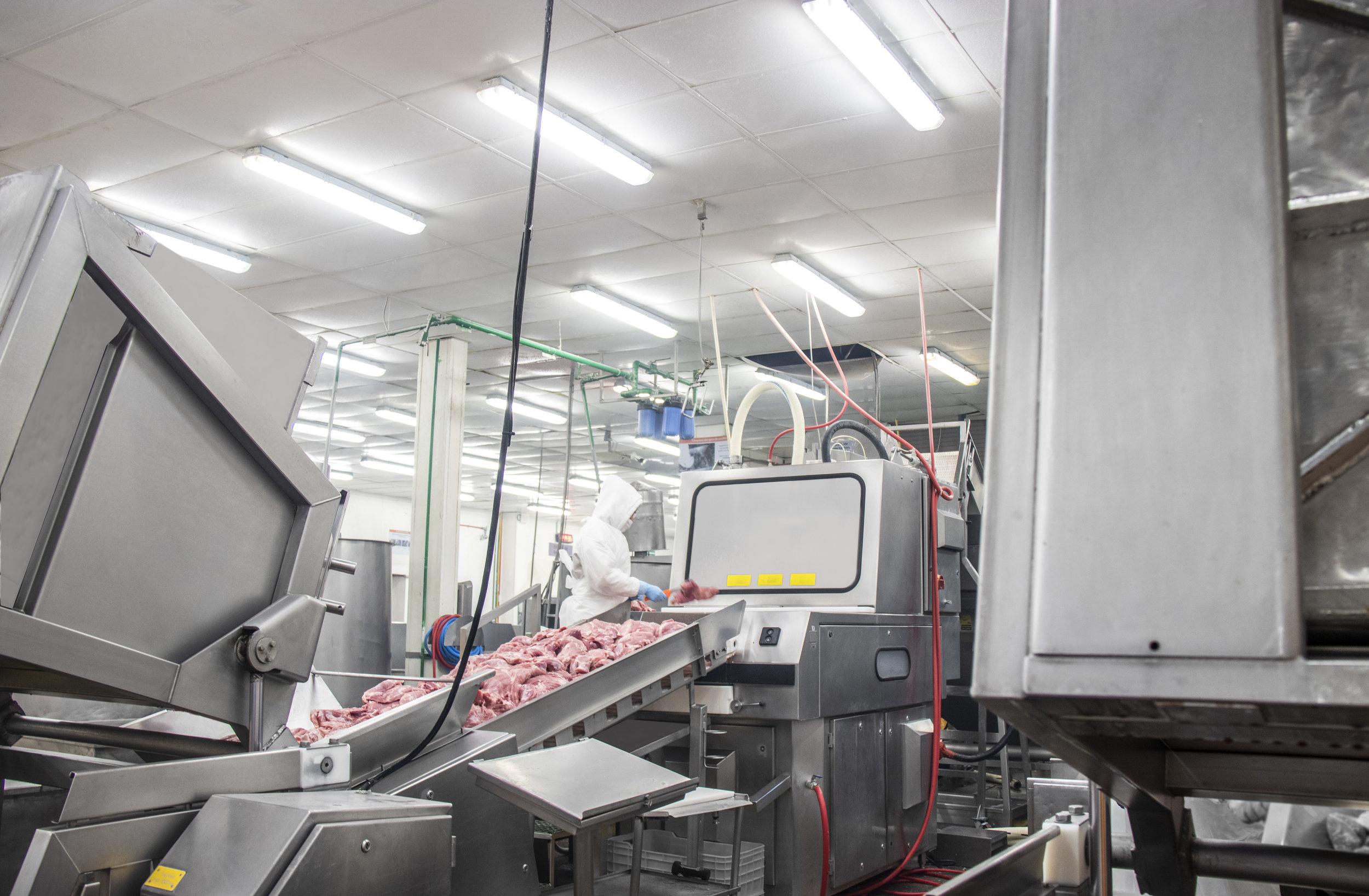 planta de procesamiento carnes frías
