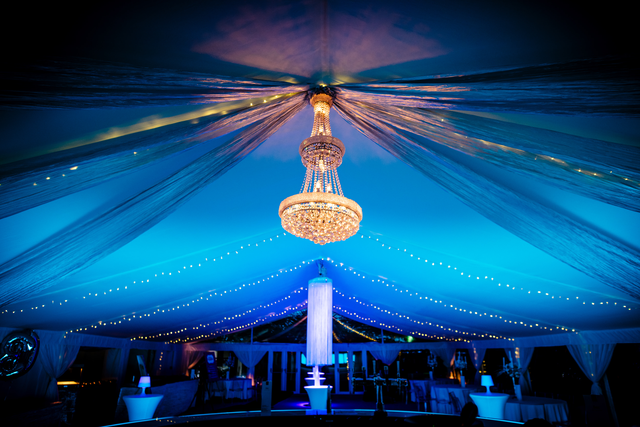Atmospherically lit blue evening interior of a Few's Marquee