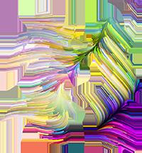 jumpgirls_rainbow_200.png