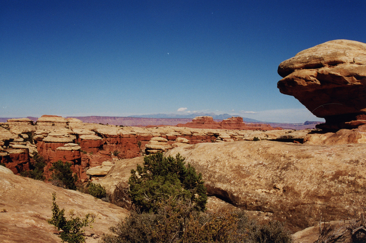 The Needles District in Canyonlands, 1998
