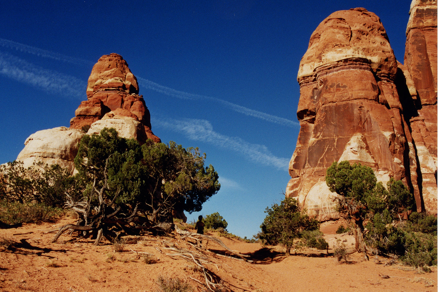 The hoodoos are stone statues to admire from the shade. Canyonlands photo, 1998